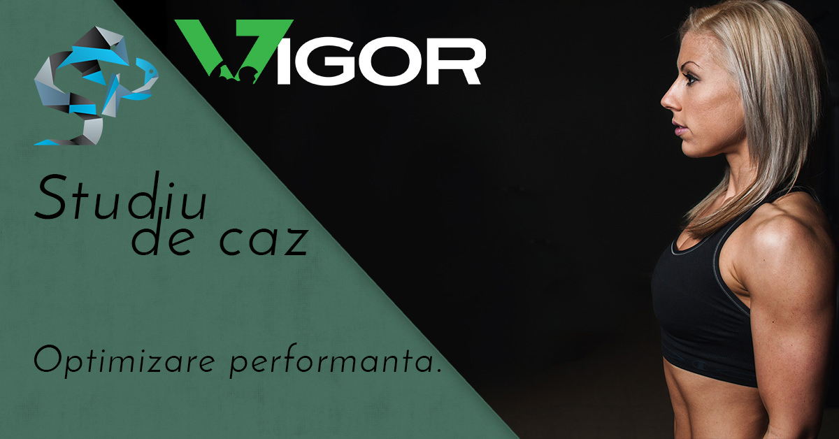 studiu de caz optimizare performanta