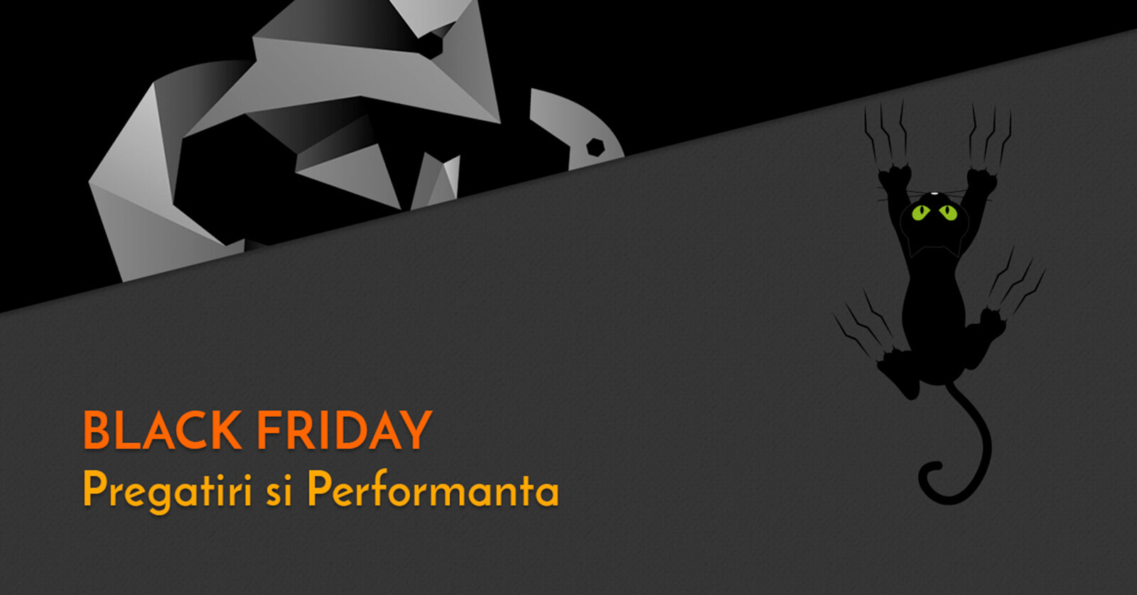 Black Friday pregatiri si performanta Web Design Timisoara Sinners Projects