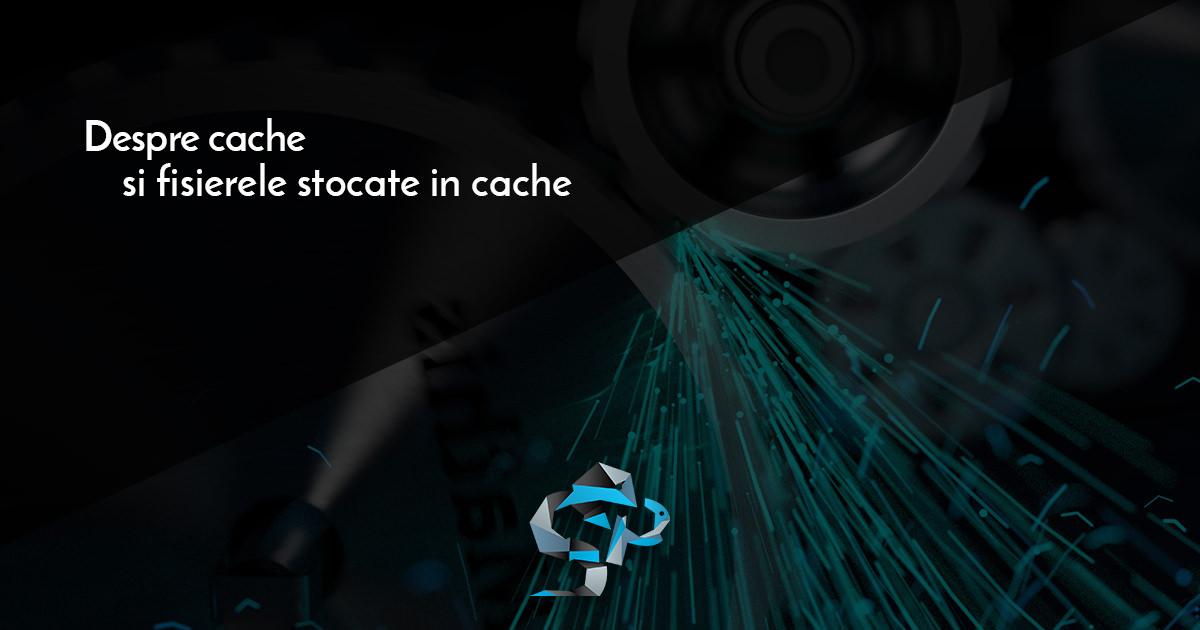 Ce face un cache? Ce sunt datele stocate in cache?