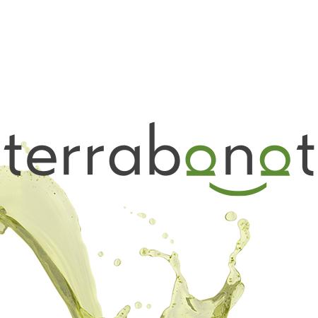 Terra Banat – design logo premium