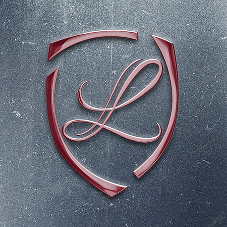 LIDIS – design logo premium