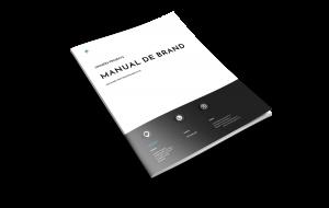 manual de identitate vizuala