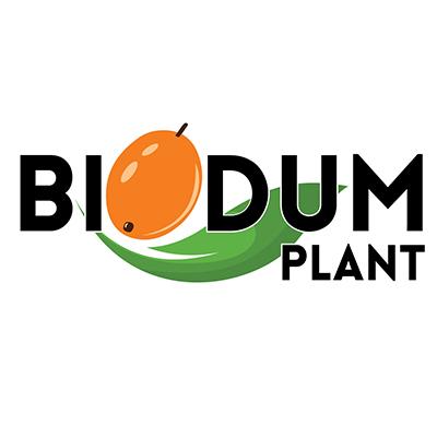 Design Logo, Ambalaj si Carte de vizita Biodum Plant